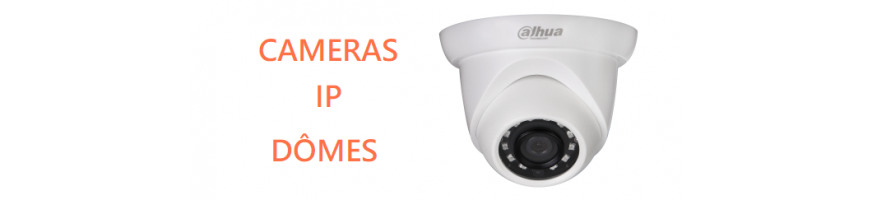 Caméras Vidéosurveillance IP Dôme DAHUA | Microview
